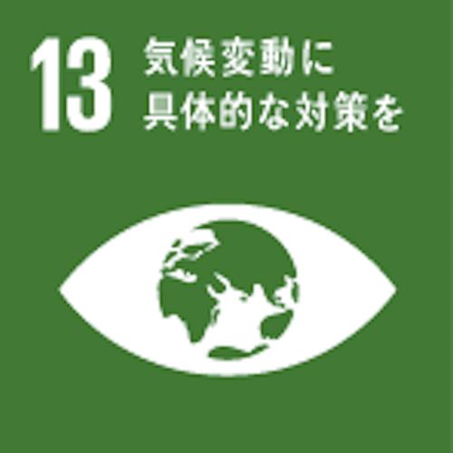 SDGsのゴール13